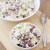 Easy Back To School Cottage Cheese Waldorf Salad Recipe